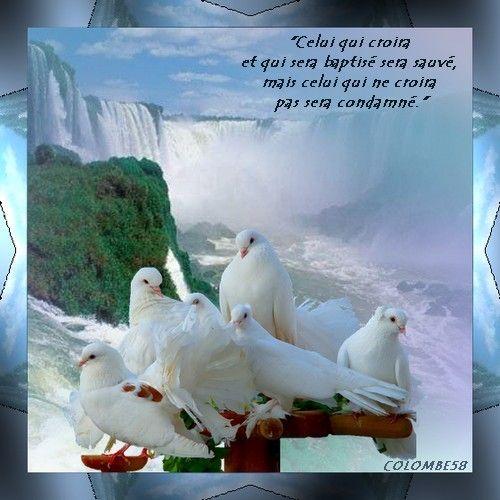 Top Images avec verset biblique EY31